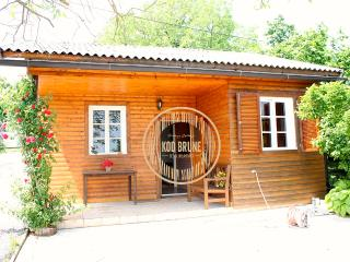 "Vintage Cottage ""Kod Brune"" - Cazma vacation rentals"
