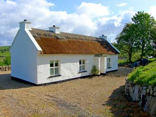 Cozy 2 bedroom Cottage in Ballyshannon - Ballyshannon vacation rentals