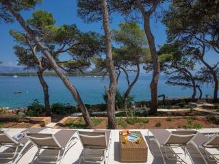 Perfect Villa with Internet Access and A/C - Jelsa vacation rentals