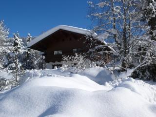 3 bedroom Condo with Deck in Kleinarl - Kleinarl vacation rentals