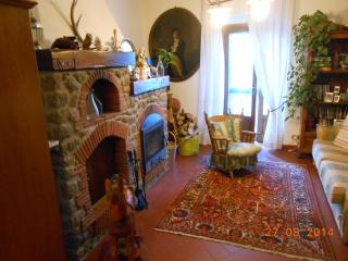 Nice Townhouse with Internet Access and Wireless Internet - Piteglio vacation rentals