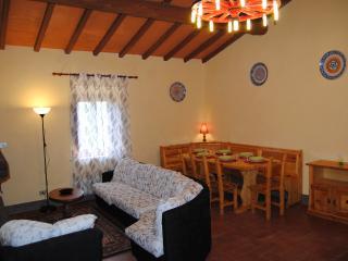 Relax in Casentino al Podere Omomorto - Pratovecchio vacation rentals