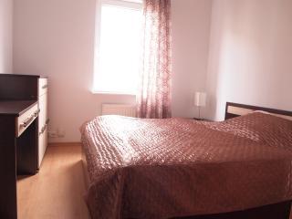 Apartamenty Centrum apart 29 - Szczecin vacation rentals