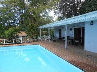 Cozy Villa with Deck and Internet Access - Olveston vacation rentals