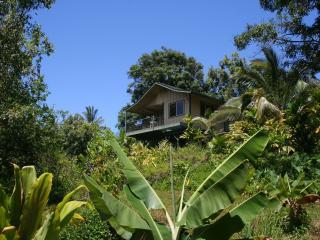 Private Jungle Cottage; Waterfalls, Natural Pools - Haiku vacation rentals