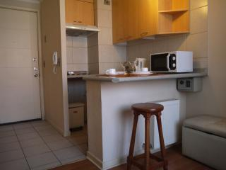 Romantic 1 bedroom Condo in Santiago with Internet Access - Santiago vacation rentals