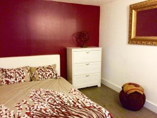 Lower Level Private Rm, Friendly People, HUGE Apt. - Brooklyn vacation rentals