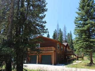 Perfect House with Deck and Internet Access - Lead vacation rentals