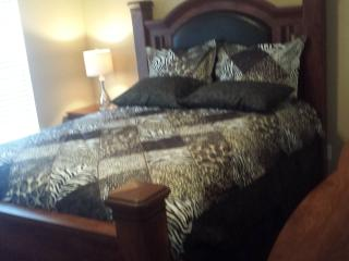 Metro Atlanta Central Location Real Nice & Cozy !! - Atlanta vacation rentals