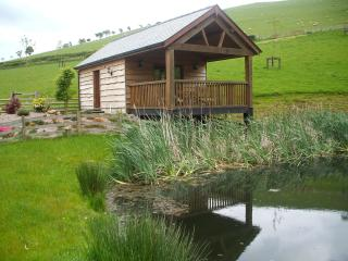 Lily Pond Lodge - Builth Wells vacation rentals