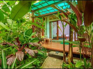 Cozy Wayan Sueta Bed & Breakfast - Abiansemal vacation rentals