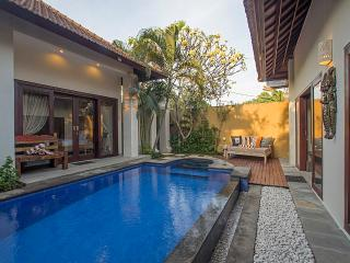 Seminyak Center 2 bedrooms villa - Seminyak vacation rentals
