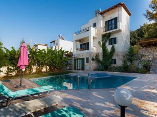Eco-Farm 4 bedroom Villas with private pool - Gavalochori vacation rentals