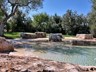 TRULLI DI MONTALTINO CHARMING REFINED TRULLI VILLA - Polignano a Mare vacation rentals