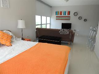 White Sands - Condo Studio Apartment - San Juan vacation rentals
