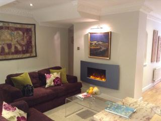 Quality Westminster Apartment - London vacation rentals