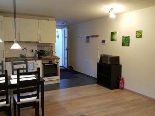 Ferienwohnung im Neubau Bondorf - Bondorf vacation rentals