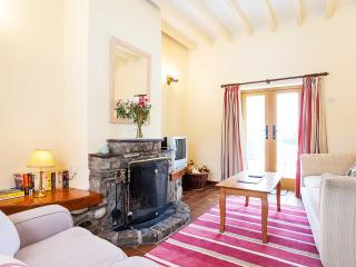 Plas Yw Cottage in Conwy Valley - Conwy vacation rentals