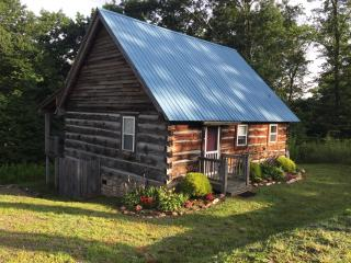 Cozy 2 bedroom Cabin in Meadows of Dan with Deck - Meadows of Dan vacation rentals