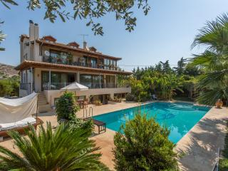 Villa Ioanna in Anavyssos - Anavyssos vacation rentals