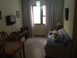 Ipanema Opportunity - Rio de Janeiro vacation rentals