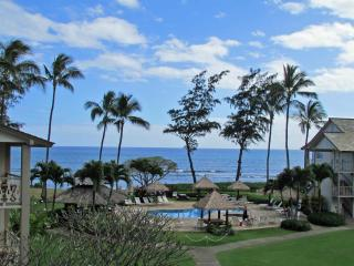 Nice Condo with Internet Access and Short Breaks Allowed - Kapaa vacation rentals