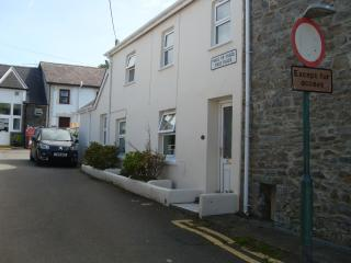 1 field place - New Quay vacation rentals