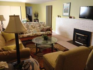 Spacious Mid-Century Modern 2-Bed Lower Apartment - Missoula vacation rentals