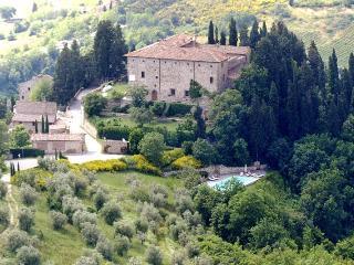 Le Ginestre - San Casciano in Val di Pesa vacation rentals