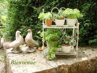 Gite Romance 3***  2 personnes au Cadran Solaire. - Sancey-le-Grand vacation rentals