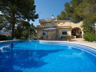 Two Grand Villas sleeps up to 22 guests. - Aigues vacation rentals