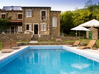 Beautiful stone villa  with private swimming pool - Oprtalj vacation rentals