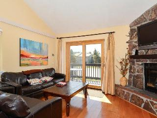 Perfect House with Internet Access and Shared Outdoor Pool - Fraser vacation rentals