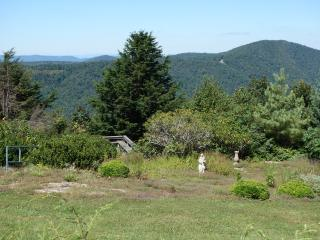 Tsuga on the Ridge - Meadows of Dan vacation rentals