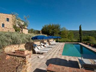 Ileana - Bucine vacation rentals