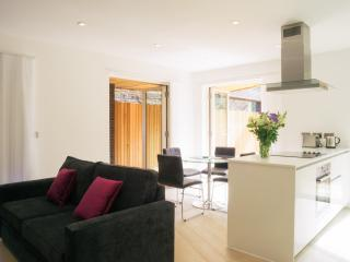 Stunning 2 bed balcony apartments - Islington/City - London vacation rentals