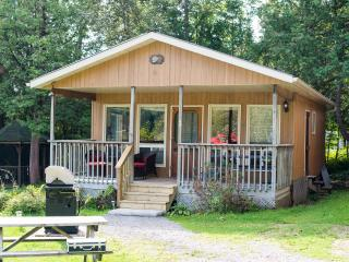 Ogopogo Resort Mountain Lake 2 Bedroom Lakeside - Minden vacation rentals