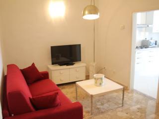 Relax Appartamento per 4 zona Careggi FI - Florence vacation rentals