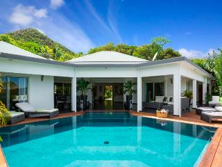 Carmen at Vitet, St. Barth - Ocean View, Contemporary, Spacious - Vitet vacation rentals