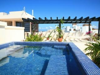 Luxury Penthouse with Rooftop Oceanviews - Playa del Carmen vacation rentals