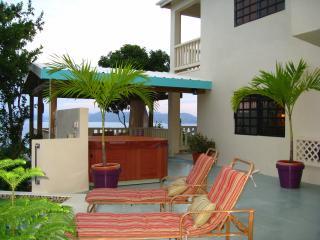 Rich Ocean Views, Pool/Spa, Tropical, Zen, Comfort - Saint Thomas vacation rentals