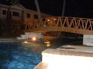 Beautiful Condo with Internet Access and A/C - Playas del Coco vacation rentals