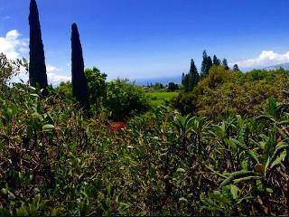 Spacious Home on Maui Estate - Kula vacation rentals