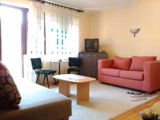 Bright 1 bedroom Condo in Uzice - Uzice vacation rentals