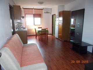 Apartament in Bucharest close to the People'sHouse - Bucharest vacation rentals