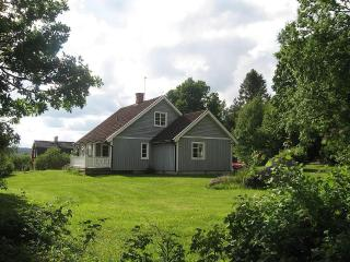 Swe-home Hornkullen whit sauna, forrest, lakes - Filipstad vacation rentals