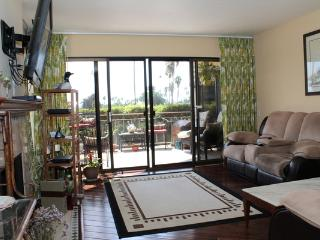 Crown Point Drive 103(CPV-103) - San Diego vacation rentals