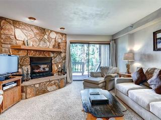 Comfortable Breckenridge 1 Bedroom Free shuttle to lift - AT002 - Breckenridge vacation rentals