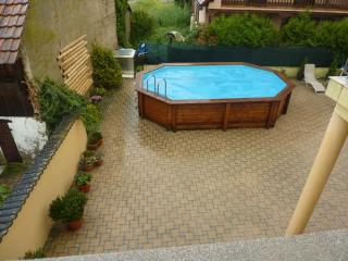 Delightful Alsace house with pool - Biesheim vacation rentals
