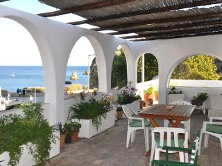Overlooking the sea - Praia D. Ana - Lagos vacation rentals